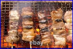 Japan Yakitori BBQ Diatomite Charcoal Grill Barbecue Hibachi Konro 54 x 23cm